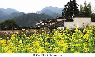 wuyuan59mov - beautiful old village in China,birds flying...