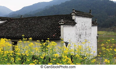 wuyuan60mov - beautiful old village in China, birds landing...
