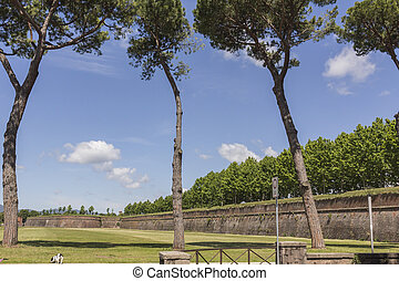 Town wall in Lucca, Tuscany, Italy
