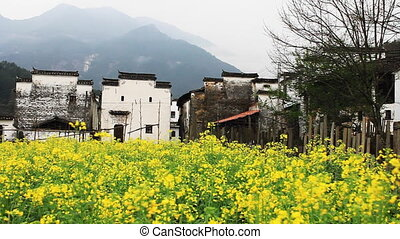 wuyuan64mov - beautiful old village in China