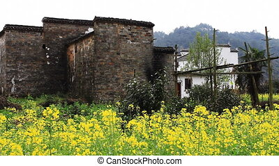 wuyuan66mov - beautiful old village in China