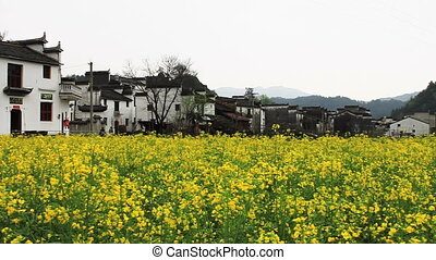 wuyuan67mov - beautiful old village in China