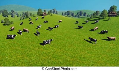 Herd of cows on pasture aerial view - Herd of cows graze on...