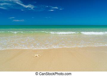 Khao Lak beach in Thailand - White sand beach Khao Lak in...
