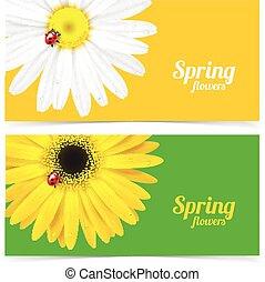 Spring flower and ladybug - Bright spring banners design...