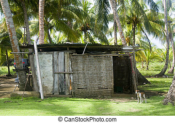storage shed in jungle architecture big corn island...