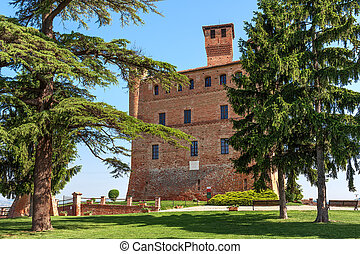 Old castle and of Grinzane Cavour in Italy. - Small green...