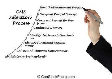 Diagram of CMS Selection Process