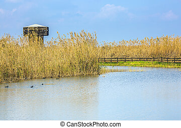 Wooden round tower for bird watching Hula Nature Reserve,...
