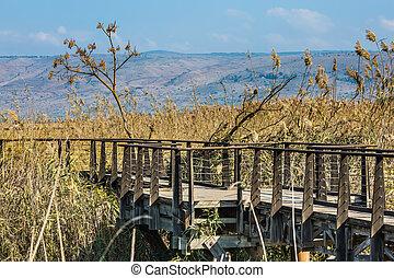 The narrow bridge to go among the grass. Hula Nature...