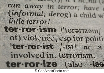 Definition of the world terrorism