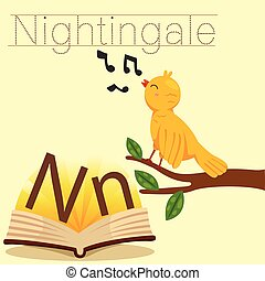 Illustrator of N for Nightingale vocabulary