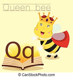 Illustrator of Q for Queen bee vocabulary
