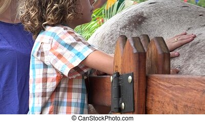 Boy And Sister Petting Horse