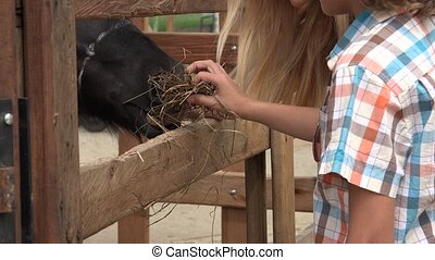Young Boy And Sister Feeding Horse