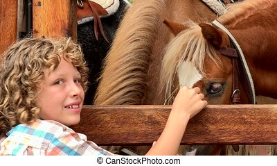 Boy Feeding Farm Horses
