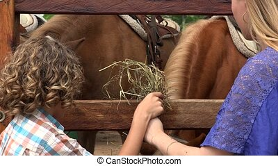 Boy And Girl At Horse Farm