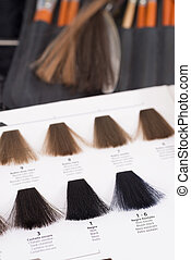 Hair color chart - Professional color chart for hair dyeing...