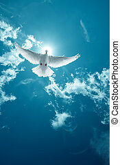 White Holy Dove flying in the sky vertical image