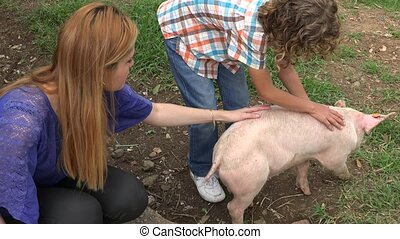 Kids Playing With Pig