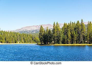 West Tensleep Lake and Trees - West Tensleep Lake in the...