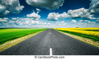 Empty Asphalt Countryside Road Through Fields With Yellow Flower