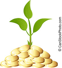 Green Young plant with money - Young plant with golden...