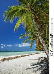 exotic tropical empty beach in paradise boracay island...