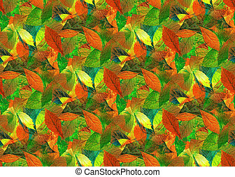 Leaves as Seamless - Colorful leaves as Seamless background