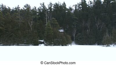Snowy environment in Canadian Park - Snowy environment in...