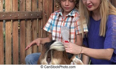 Kids Feeding Goat At Farm