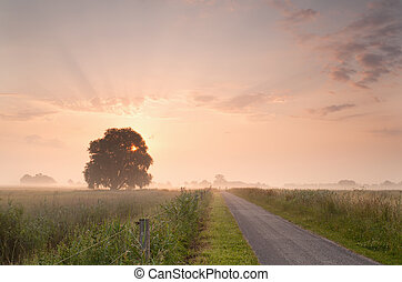 rural summer sunrise