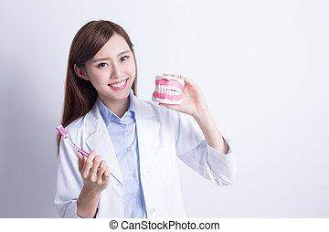 教, 醫生, 刷子, 牙齒, 你