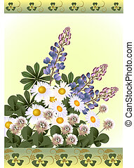 Wild Flowers - Wild flowers - clover, lupine and daisy