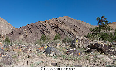 Exposed geological layers