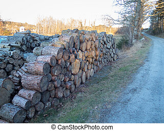 some stock from the tree that will be firewood