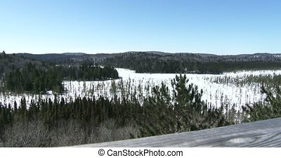 Panoramic view of National park - Panoramic view of the...
