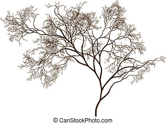 beautiful tree - detailed tree silhouette, vector
