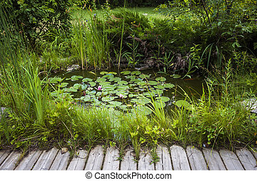 Small landscaping pond - Small pond as part of landscaping...