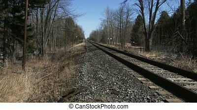 Long train track in the woods close to Guelph, Ontario,...