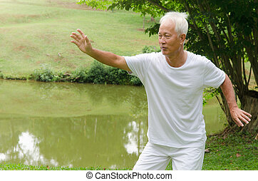 asian senior man performing tai chi
