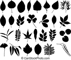 Leaves and foliage - File contains 28 elements for drawing...