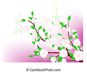 apple tree spring blossom abstract frame