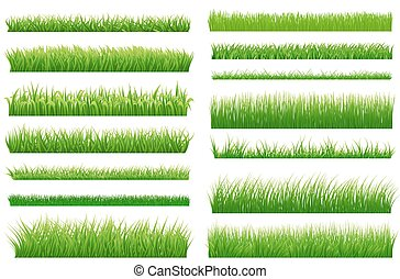 Set of spring green grass horizontal borders. Green grass collection on white background for Your design