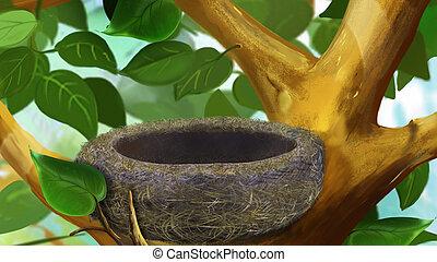 Birds Nest in a Tree