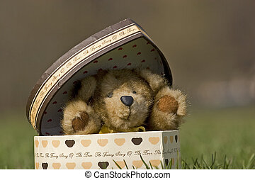 Teddy bear made by natural mink sitting in a gift box
