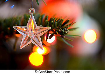 Starlet Christmas decorations hanging in tree