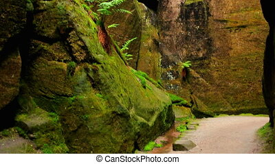 Caves and mountains in Adrspach Czech