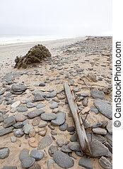 Debris on Skeleton Coast
