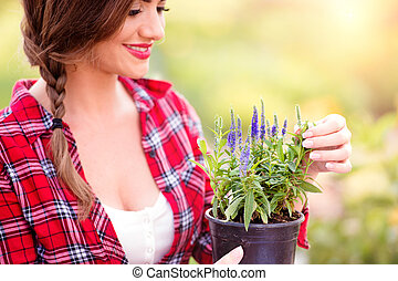 Gardener holding seedling in flower pot, green sunny nature
